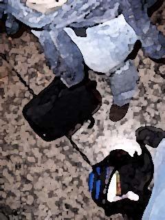 Rucksack, Taschen, Füße