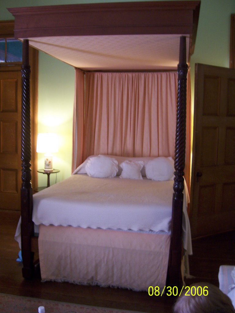 canopy bed against the - photo #36