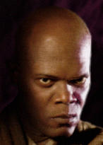Mace Windu Shiny Head