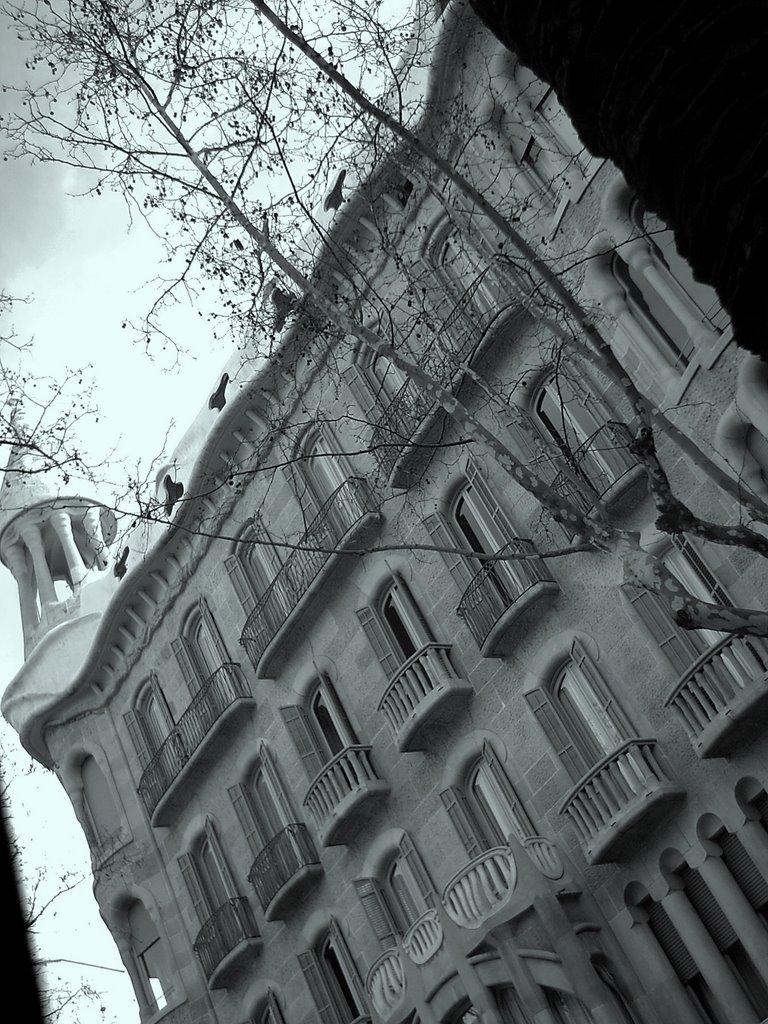 Modernisme in black and white
