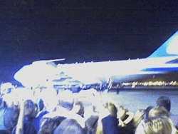 the plane, the plane!
