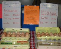 Eggs on display at Back Woods Family Farm booth