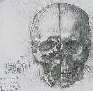Leonardo da Vinci (1452-1519) - desenho para o estudo anatómico do crânio (1510)