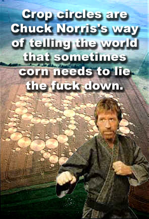 Crop circles are Chuck Norris's way of telling the world that sometimes corn needs to lie the fuck down.