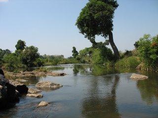 Kushalnagar