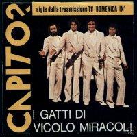 """I Gatti Di Vicolo Miracoli  - Capito? (1979 - 7"""")"""