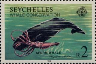 selo seychelles