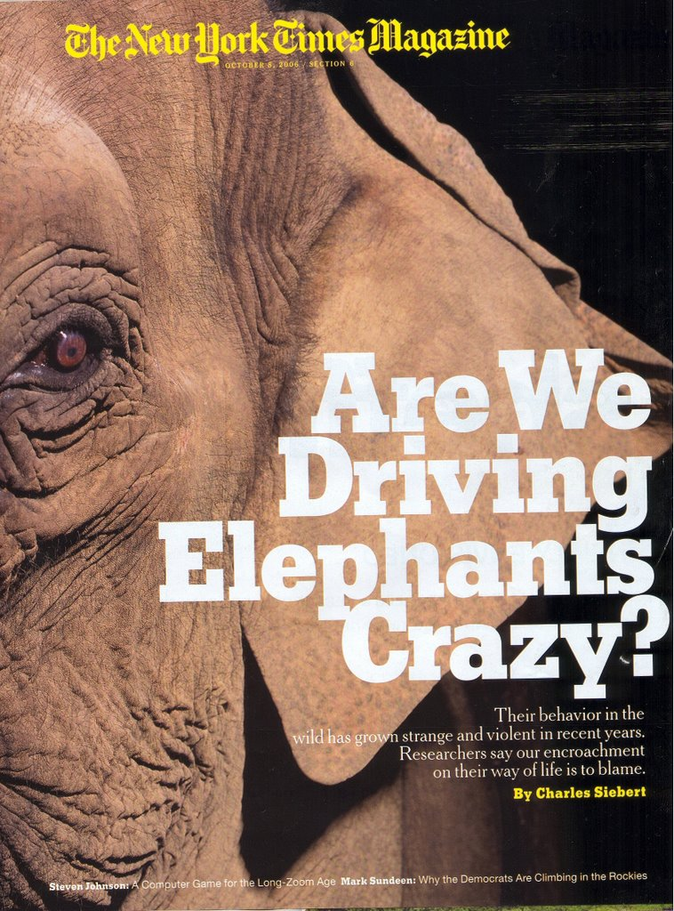 an elephant crack up charles siebert Nyt: an elephant crackup no, this isn't about the republicans it's really about elephants, and about us, humanity by charles siebert published: october 8, 2006.