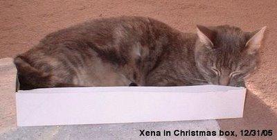 Xena in box