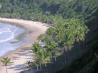 Pipa - Brasil - Viagens de sonho