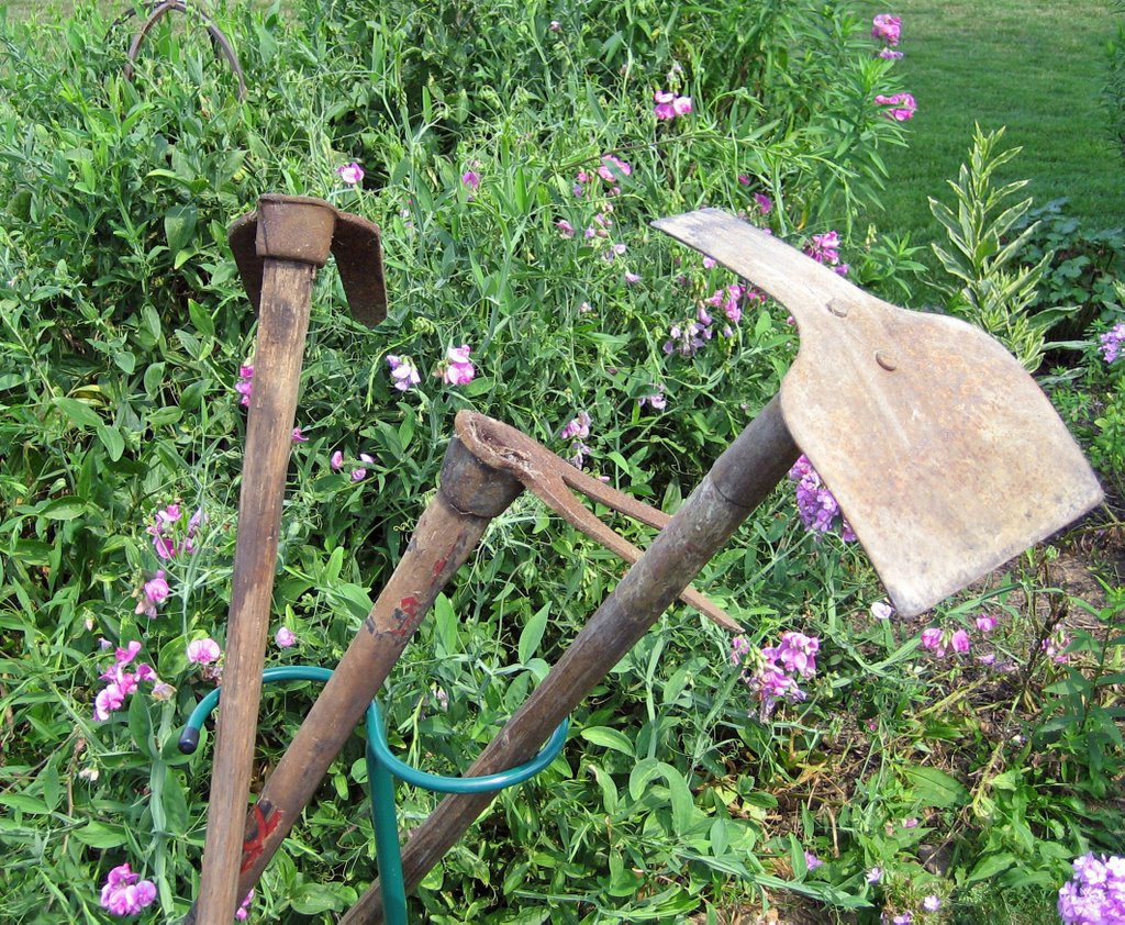 Hoe And Garden Pictures