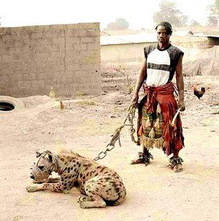 El hombre: el mejor amigo de la hiena