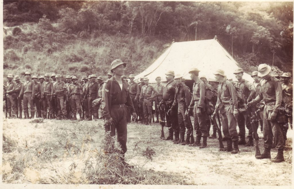 malayan emergency The malayan emergency (1948-60) was one of the few successful counter-insurgency operations undertaken by the western powers during the cold war.