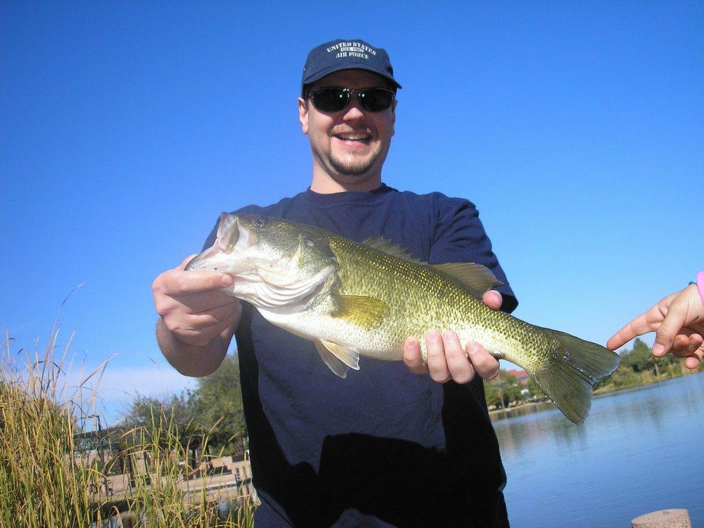 Az bass november 2005 for Bass fishing az