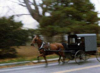 Amish Horse and carriage Pennsylvania near Baltimore