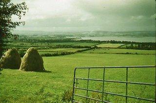 A Field in Ireland
