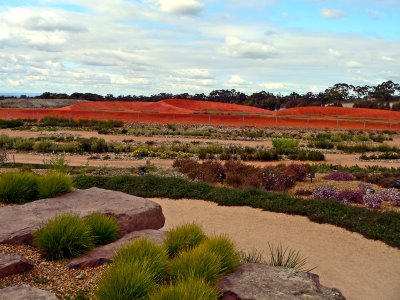Eucalptus gardens on each side of the path with a dry stony creek bed between us and the red centre