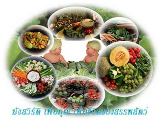Staying Vegetarian in Thailand