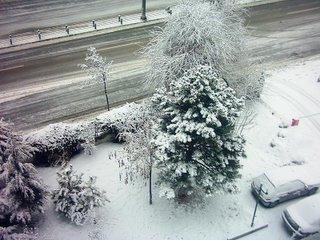 Ankarada kar