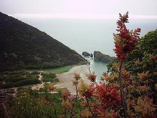 Resmi ya ben ya Taner çekmişti, hatırlamıyorum. 20 Mayıs 2005, Batı Karadeniz sahilinden bir yer