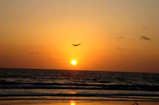 Ilha de Canelas - Por do Sol