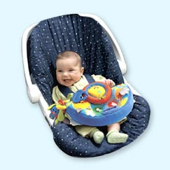 In Fact The Right To Vote Is Nothing More Than One Of Those Toy Steering Wheels Mounted On Infant Car Seats That Give Infants Illusion They Are