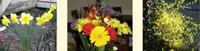 flowers everywhere!!!