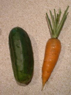 Carrot and Cucumber