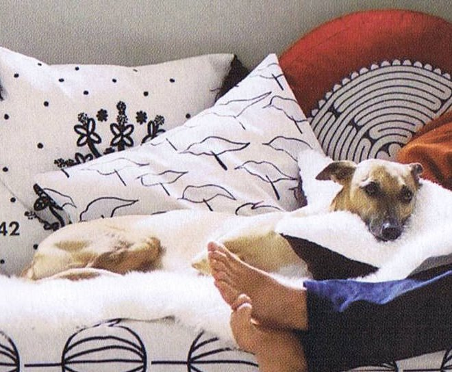 Ikea catalogue dogs dick