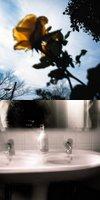 岡本由樹子×杜多梓