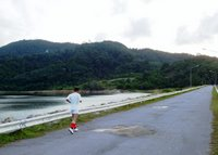 Jogger on the dam