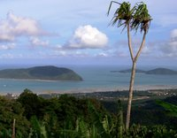 View over Chalong Bay to Lone Island and Coral Island