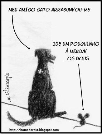 can e rato