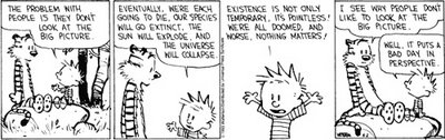 CALVIN'S BIG PICTURE