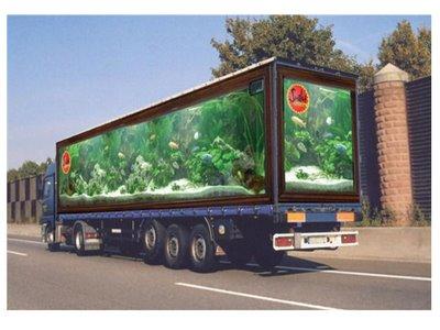 Truck Illusion 6