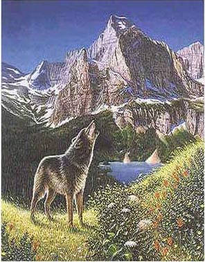 Hidden Wolves Illusion