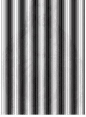 Hidden Image Illusion