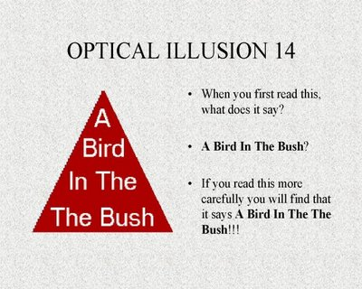 A Bird In The Bush Confusing Illusion