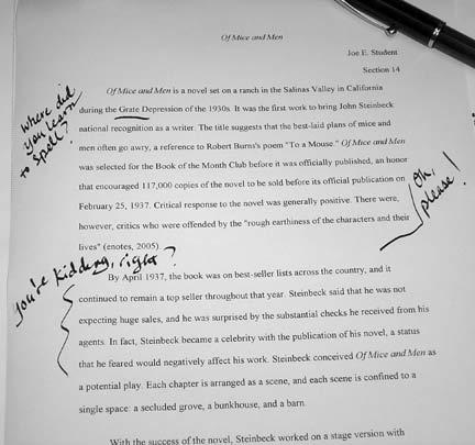 essays graded online