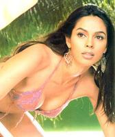 Ms.Mallika Sherawat