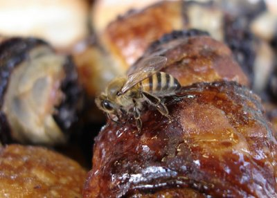 Bee on rugelach
