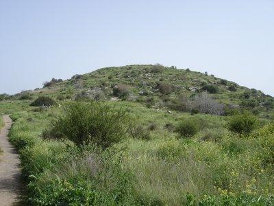 Givat ha-Tormosim