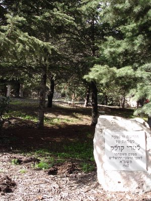 Pine grove planted in 1981 honor of Mayor Teddy Kollek's seventieth birthday