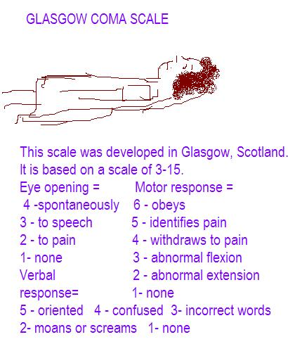 glasgow coma scale assessment pdf