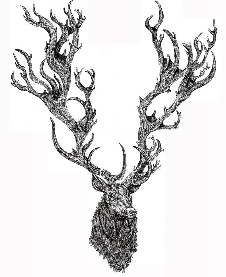 Celtic Deer He  Celtic Stag Head