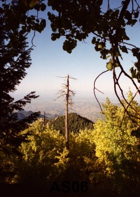 View from Mt. Lemmon, AZ, Oct. 1994