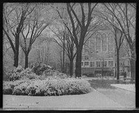 Christmas Snow Town Square, Library of Congress Prints and Photographs Division, REPRODUCTION NUMBER: LC-D4-70207