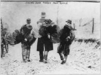 Thanksgiving Turkeys, Library of Congress, Prints & Photographs Division, [reproduction number, [LC-USZ62-70874]