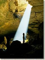 Recharging the ecosystem.  Sunlight shines into this cave entrance allowing abundant localized growth, which in turn provides food sources for life deeper within the cave. The National Park Service Cave and Karst Program