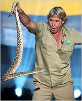 Steve Irwin, the crocodile hunter killed by Sting-Ray!